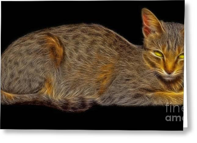 Gray Hair Mixed Media Greeting Cards - Felis catus or cat fractal art Greeting Card by Image World