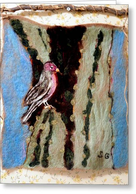 Universities Tapestries - Textiles Greeting Cards - Felted Finch Greeting Card by Selma Glunn