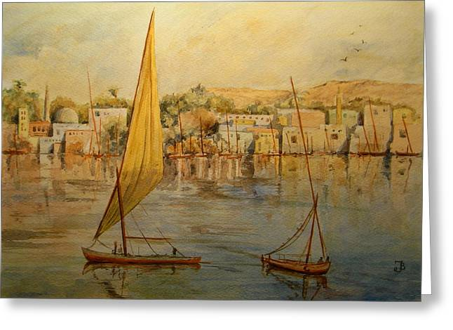 Nile Greeting Cards - Feluccas at Aswan Egypt. Greeting Card by Juan  Bosco