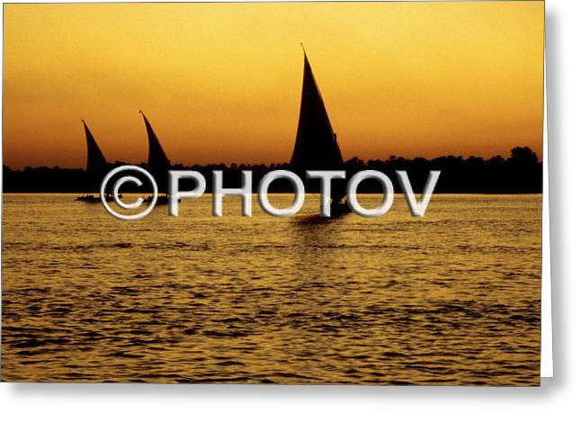 Sailboat Images Greeting Cards - Feluccas sailing on the Nile at sunset - Cairo - Egypt Greeting Card by Hisham Ibrahim