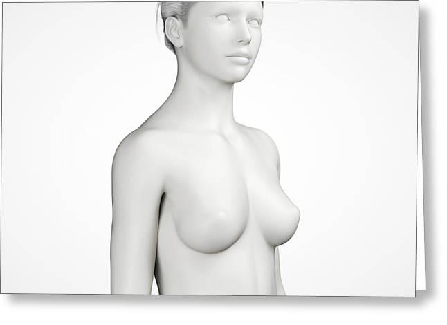 Female Anatomy Greeting Card by Sebastian Kaulitzki