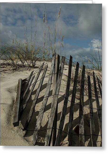 Sand Fences Greeting Cards - Fence and Dunes Greeting Card by Maria Suhr