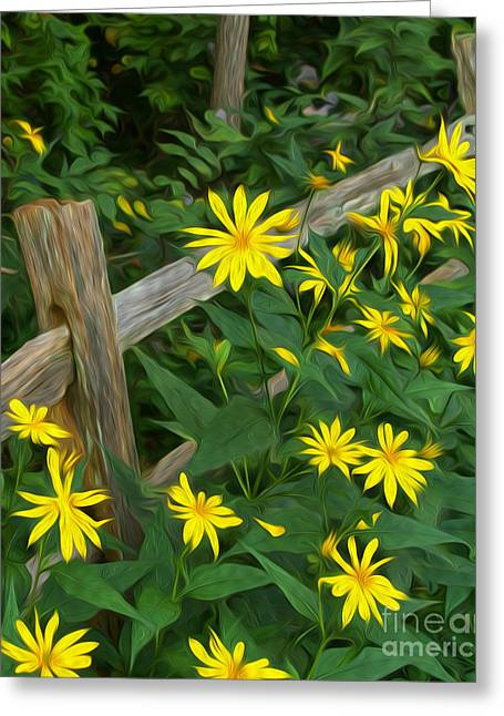 Split Rail Fence Greeting Cards - Fence and Flowers Greeting Card by Brian Mollenkopf