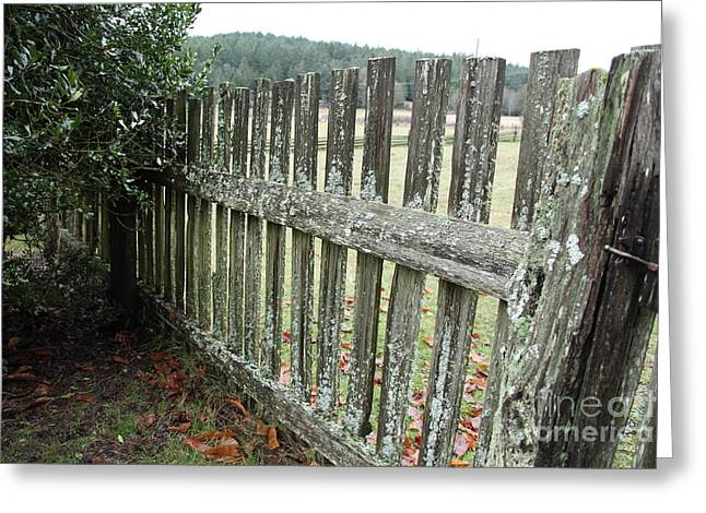 Fence At The Farm Greeting Card by Graham Foulkes