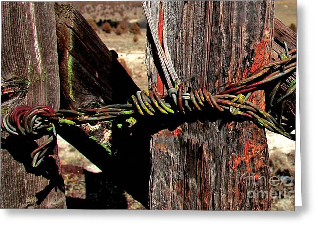 Michele Greeting Cards - Fence Closure Harney County Oregon Greeting Card by Michele AnneLouise Machholz