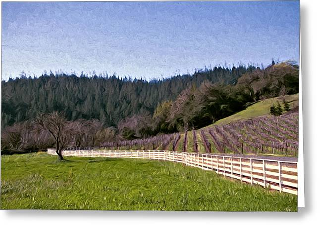 Sonoma County Vineyards. Mixed Media Greeting Cards - Fence Curves Greeting Card by John K Woodruff