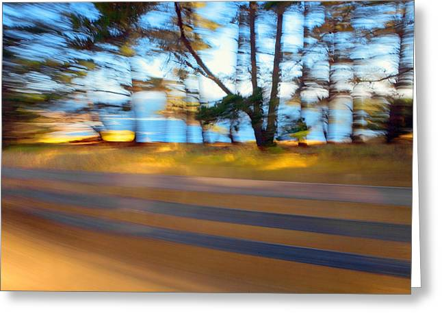 Coast Highway One Greeting Cards - Fence Greeting Card by Daniel Furon