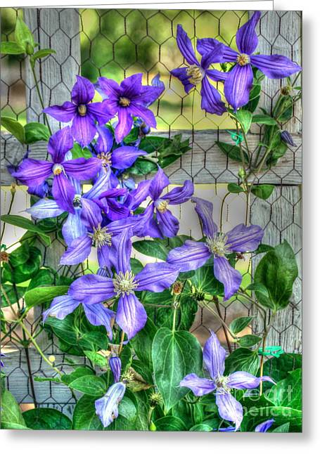 Flowers On A Fence Greeting Cards - Fence Flowers Greeting Card by Myrna Bradshaw