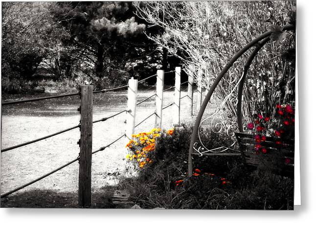 Red And White Greeting Cards - Fence near the Garden Greeting Card by Julie Hamilton