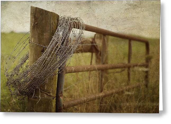 Kathy Jennings Photography Greeting Cards - Fence Post Greeting Card by Kathy Jennings