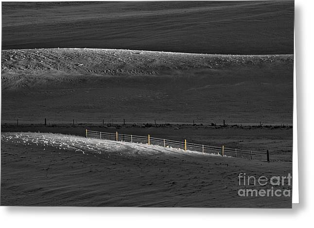 Crossover Greeting Cards - Fence Posts Greeting Card by Don Hall