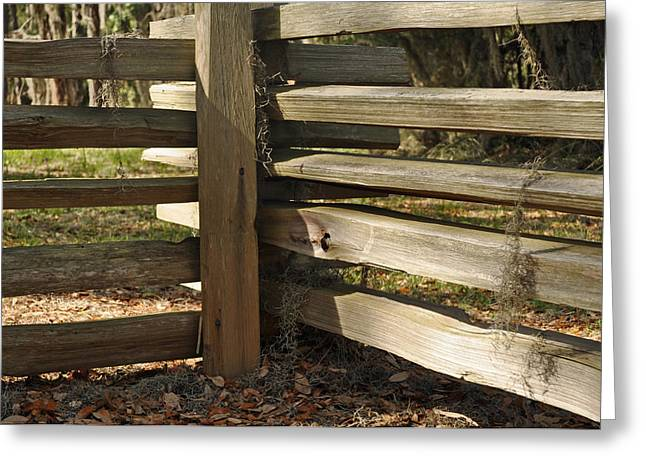 Ocean Photography Greeting Cards - Fence Posts in Jekyll Islands Historic District Greeting Card by Bruce Gourley