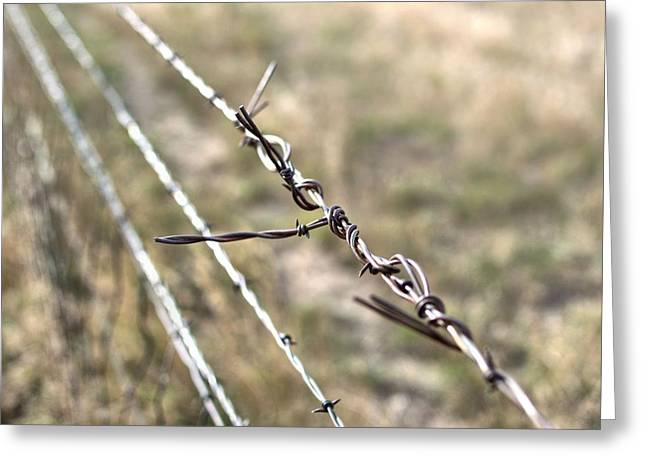 Mending Fence Greeting Cards - Fence Repair Greeting Card by Aliceann Carlton