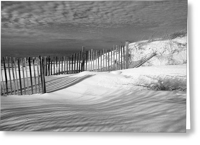 March Greeting Cards - Fence Shadows Greeting Card by Dianne Cowen