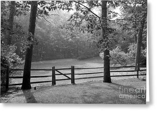 Black Country Greeting Cards - Fence Greeting Card by Tony Cordoza