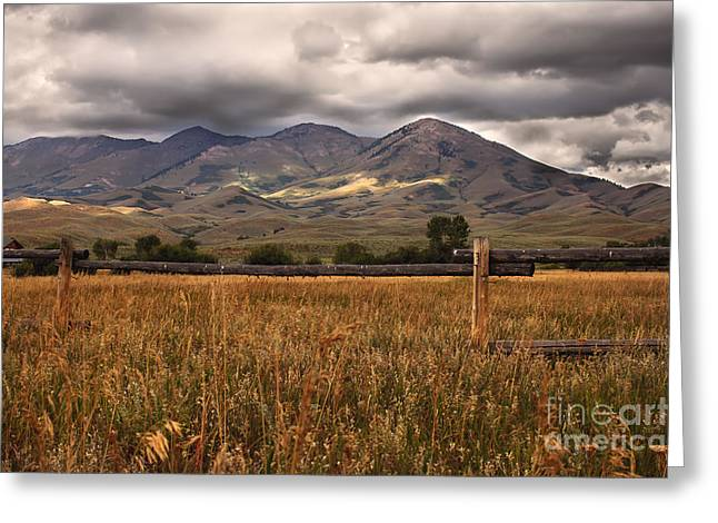 Solider Greeting Cards - Fence View Greeting Card by Robert Bales