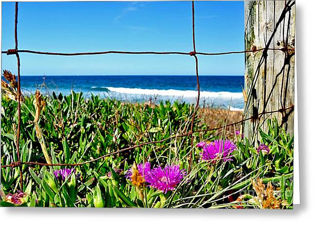Old Fence Posts Greeting Cards - Fenced In Greeting Card by Kaye Menner