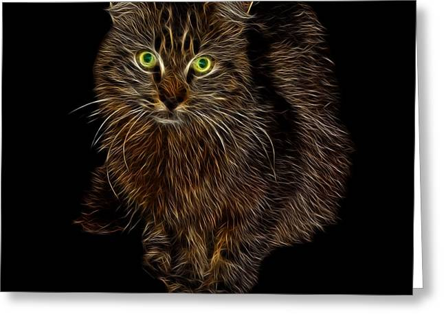 Feral Cat - 9905 F Greeting Card by James Ahn
