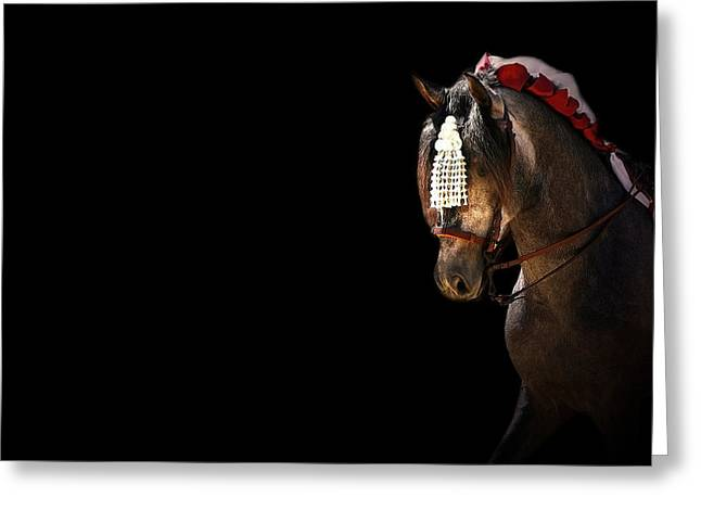 Race Horse Mixed Media Greeting Cards - Feria 6 - Collection Greeting Card by Andy Armfield