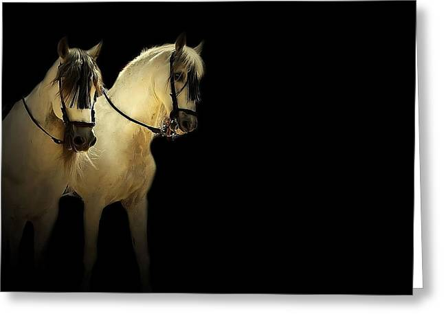 Race Horse Mixed Media Greeting Cards - Feria 7 - Collection Greeting Card by Andy Armfield