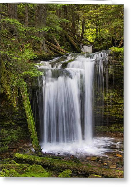 Idaho Photographs Greeting Cards - Fern Falls Greeting Card by Mark Kiver