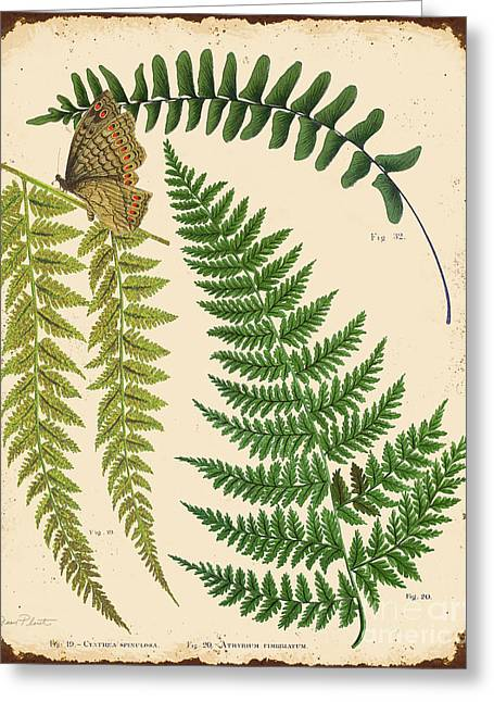 Butterfly Digital Art Greeting Cards - Ferns on Tin-A Greeting Card by Jean Plout