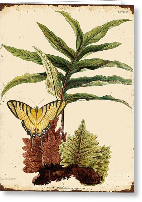 18th Century Digital Greeting Cards - Ferns on Tin-E Greeting Card by Jean Plout