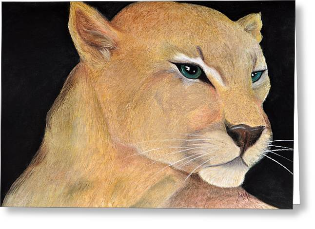 Hunter Pastels Greeting Cards - Feroz Leon Gato Monte Greeting Card by Danae McKillop