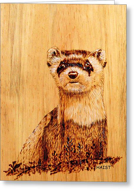 Pets Pyrography Greeting Cards - Ferret Greeting Card by Ron Haist