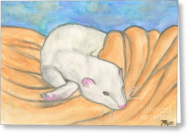 White Ferret Greeting Cards - Ferrets Favorite Blanket Greeting Card by Roz Abellera Art