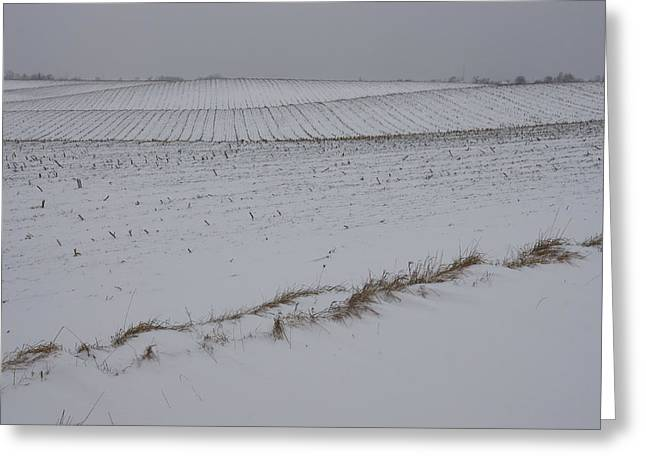 Farmers Field Greeting Cards - Fertile Farm Fields Sleeping Under the Snow Greeting Card by Georgia Mizuleva