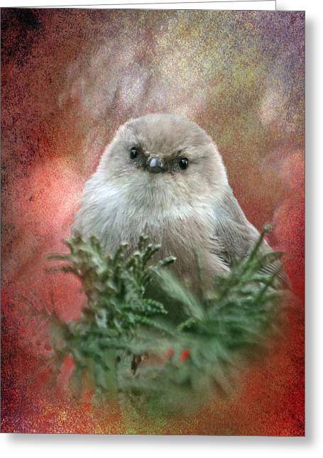 Small Birds Greeting Cards - Festive Bushtit Greeting Card by Angie Vogel