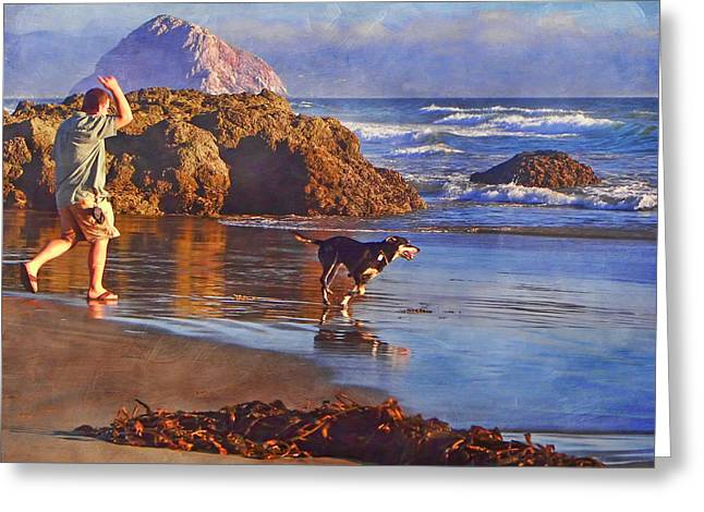 Dog Play Beach Greeting Cards - Fetch - Dog and Master - Morro  Greeting Card by Nikolyn McDonald
