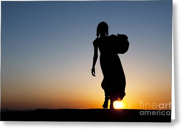 Fetching Water Greeting Card by Tim Gainey