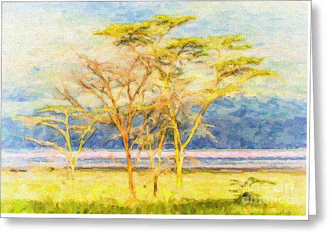 East Africa Greeting Cards - Fever trees Greeting Card by Liz Leyden