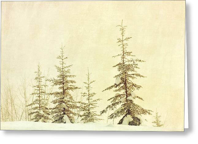Subtle Greeting Cards - Winters mist Greeting Card by Priska Wettstein