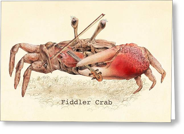 Fiddler Crab Greeting Cards - Fiddler Crab Greeting Card by Eric Fan