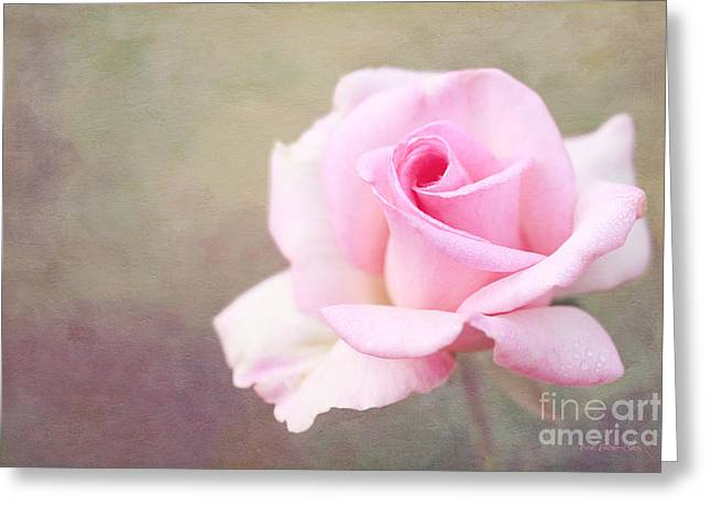 Fidelity Greeting Cards - Fidelity Greeting Card by Reflective Moments  Photography and Digital Art Images