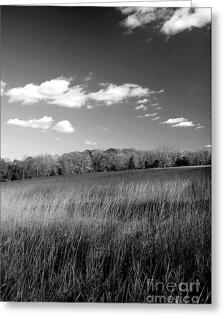 Field. Cloud Greeting Cards - Field and Sky 1 Greeting Card by Keith Conrey