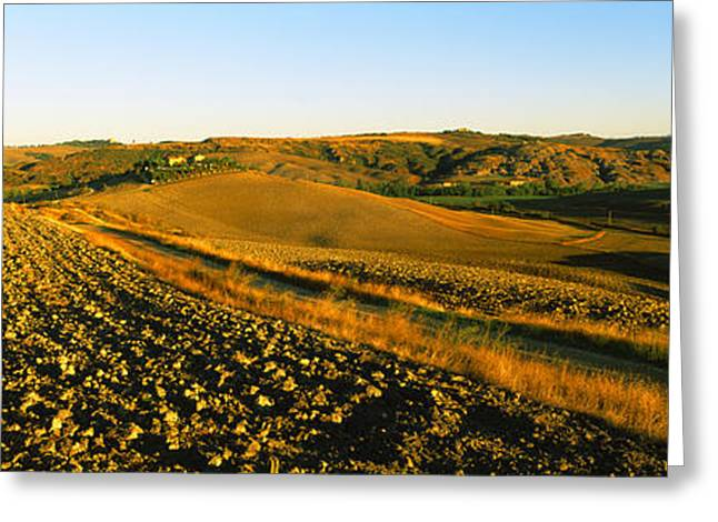 Crete Greeting Cards - Field, Crete Senesi, Tuscany, Italy Greeting Card by Panoramic Images
