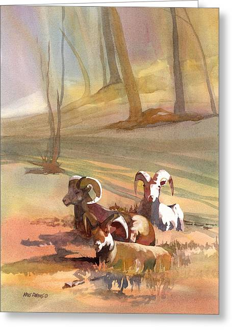 Montana Artist Greeting Cards - Field Day Greeting Card by Kris Parins