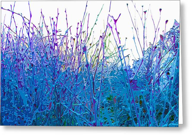 Frosty Mixed Media Greeting Cards - Field Frost Greeting Card by Brian Stevens