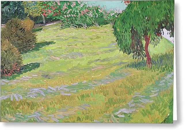 Gogh; Vincent Van Flowers Greeting Cards - Field in Sunlight Greeting Card by Vincent van Gogh