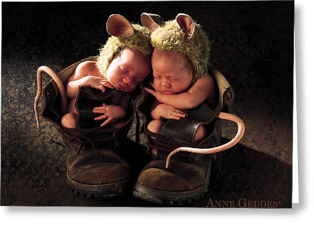 Twin Greeting Cards - Field Mice Greeting Card by Anne Geddes