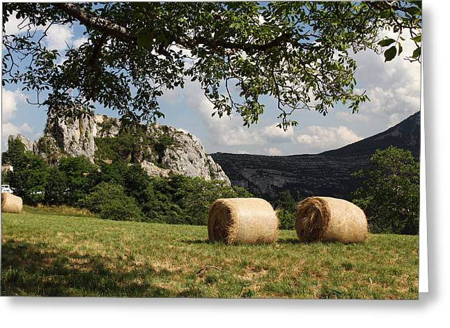Provence Village Greeting Cards - Field near Rougon Alpen Village Greeting Card by Alex Sukonkin