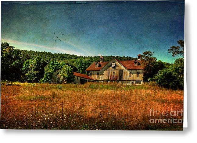 Old Barns Greeting Cards - Field of Broken Dreams Greeting Card by Lois Bryan