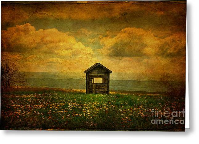 Wooden Shed Greeting Cards - Field of Dandelions Greeting Card by Lois Bryan
