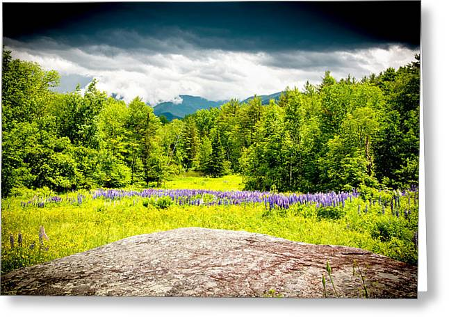 Crawford Notch Greeting Cards - Field of Dreams Greeting Card by Greg Fortier