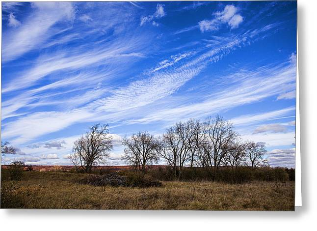 5d Greeting Cards - Field of Fall Greeting Card by CJ Schmit