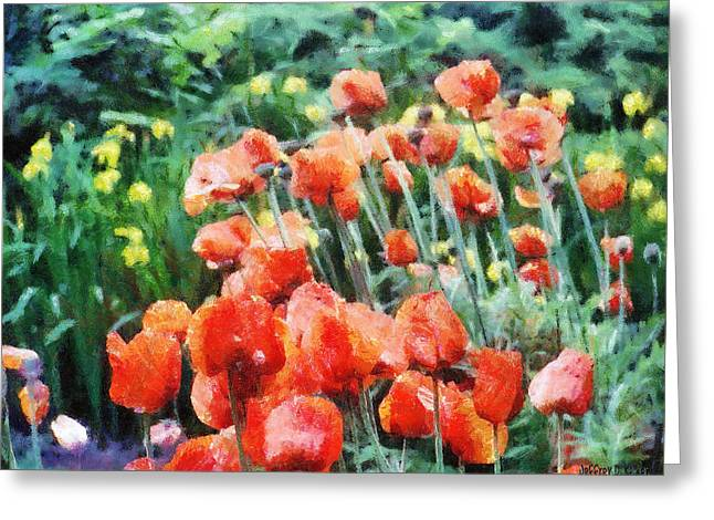 Field of Flowers Greeting Card by Jeff Kolker